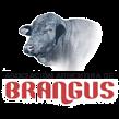 Asociación Argentina de Brangus